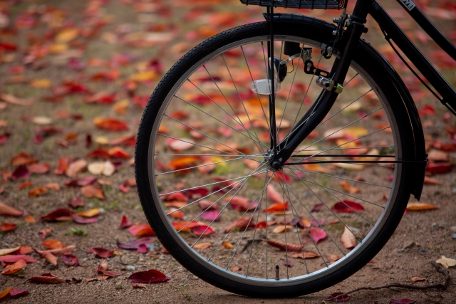 electric-bicycle-tire (3)